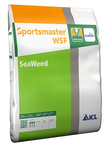 Sportsmaster WSF Seaweed