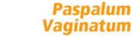Paspalum vaginatum SeaSpray