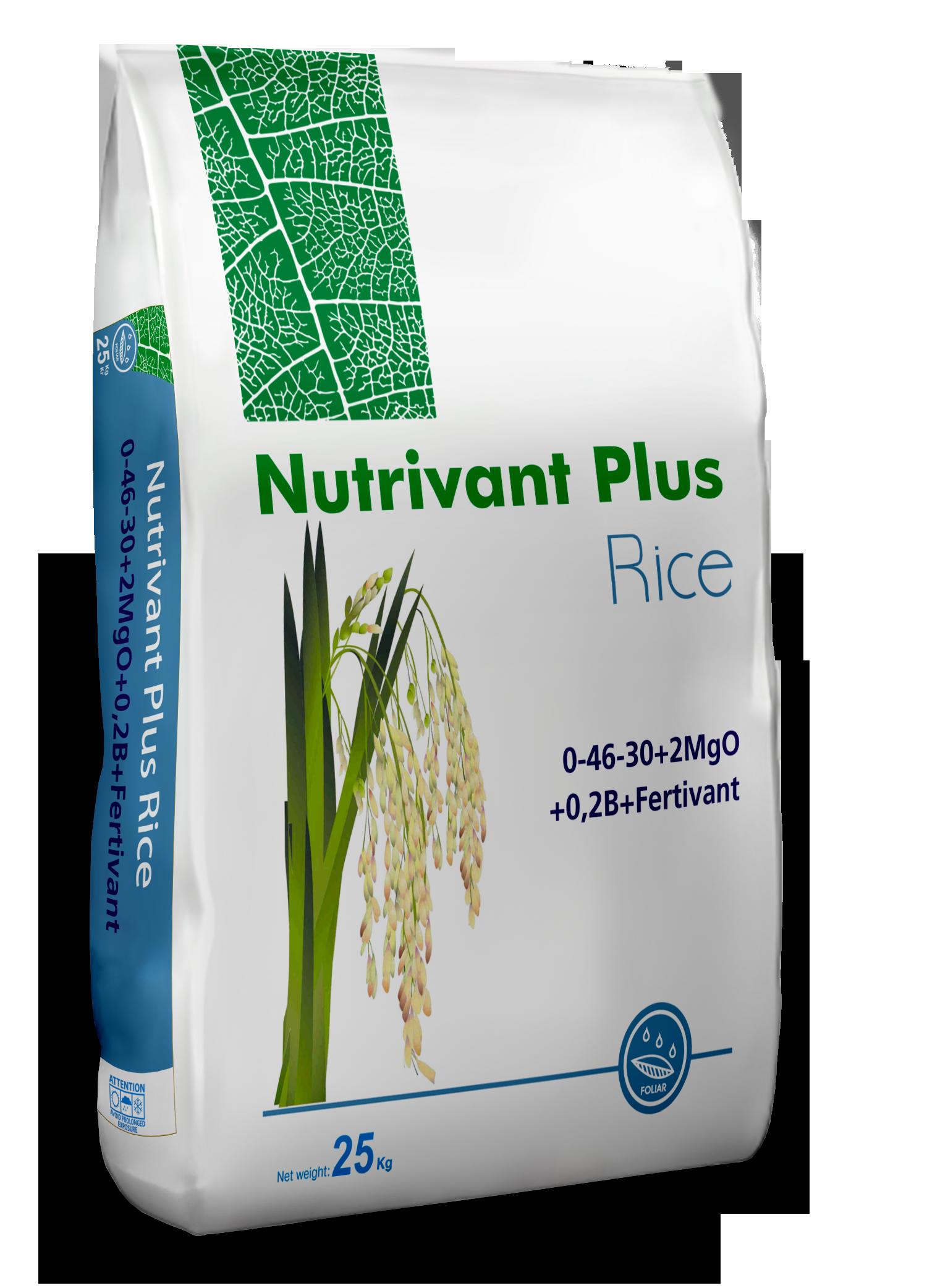 Nutrivant Plus Rice